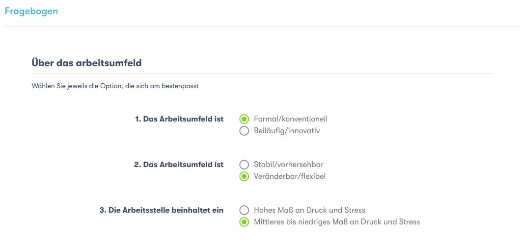 neu-job-formular-fragenbogen